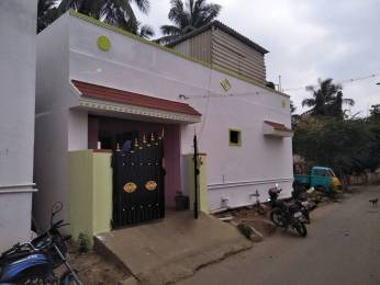 1000 sqft, 3 bhk IndependentHouse in Builder elk9443441935 TVS Nagar, Coimbatore at Rs. 38.0000 Lacs