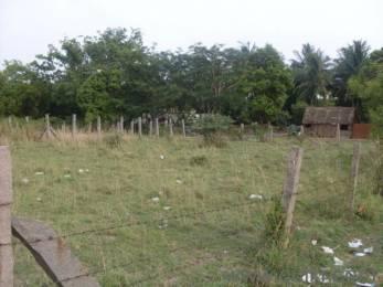 150 sqft, Plot in Builder elkay Coimbatore Udumalaipet Road, Coimbatore at Rs. 16.0000 Lacs
