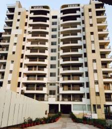 1966 sqft, 3 bhk Apartment in Golden Apartments Dhakoli, Zirakpur at Rs. 62.0000 Lacs
