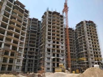 1270 sqft, 2 bhk Apartment in Builder Ambika Florence Park Mullanpur Mullanpur, Mohali at Rs. 46.9000 Lacs