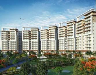 1906 sqft, 3 bhk Apartment in Maya Green Lotus Saksham Patiala Highway, Zirakpur at Rs. 65.0000 Lacs