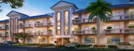 1350 sqft, 3 bhk BuilderFloor in GBP Camellia Daun Majra, Mohali at Rs. 34.4000 Lacs