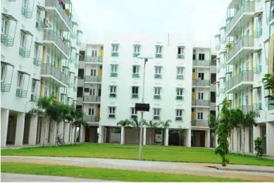 533 sqft, 1 bhk Apartment in Builder Affordable 1BHK apartment in avadi Avadi, Chennai at Rs. 17.3225 Lacs
