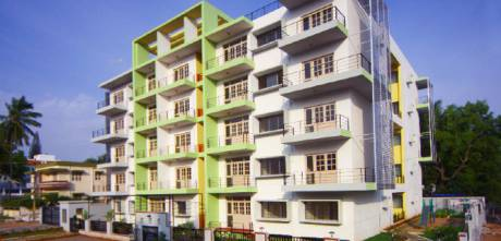 534 sqft, 1 bhk Apartment in Damden Vivo Attibele, Bangalore at Rs. 19.6512 Lacs