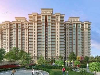 1203 sqft, 2 bhk Apartment in Eldeco Acclaim Sector 2 Sohna, Gurgaon at Rs. 48.5005 Lacs