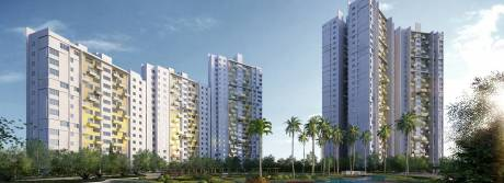 999 sqft, 2 bhk Apartment in Elita Garden Vista Phase 2 New Town, Kolkata at Rs. 45.0000 Lacs