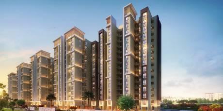 515 sqft, 1 bhk Apartment in Shapoorji Pallonji Joyville Hinjawadi Hinjewadi, Pune at Rs. 40.9077 Lacs
