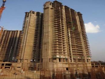 1565 sqft, 2 bhk Apartment in AIPL The Peaceful Homes Sector 70A, Gurgaon at Rs. 1.0000 Cr