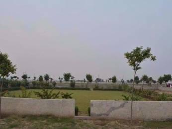 792 sqft, Plot in BKR Eco City Basilva Colony, Faridabad at Rs. 8.8000 Lacs