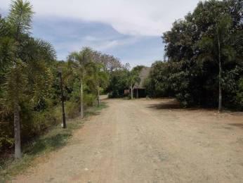 5000 sqft, Plot in Builder Project Auroville, Pondicherry at Rs. 32.5000 Lacs