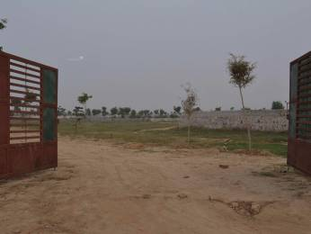 1000 sqft, Plot in Builder Open Biggest Bungalow Township Project In Manjari Bk Manjari Budruk, Pune at Rs. 13.5000 Lacs