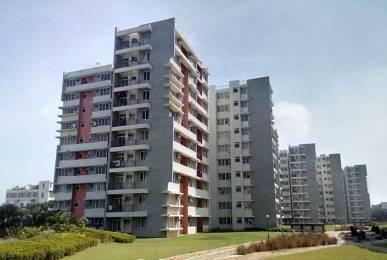 1712 sqft, 3 bhk Apartment in Akshaya Metropolis Maraimalai Nagar, Chennai at Rs. 68.4800 Lacs