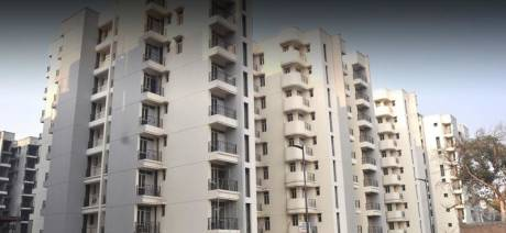 1125 sqft, 2 bhk Apartment in Builder Project GT ROAD NEAR DILSHAD GARDEN M, Ghaziabad at Rs. 45.0000 Lacs