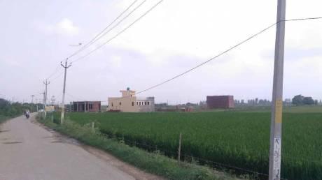 900 sqft, Plot in Builder Project Kharar Kurali Road, Mohali at Rs. 8.0000 Lacs