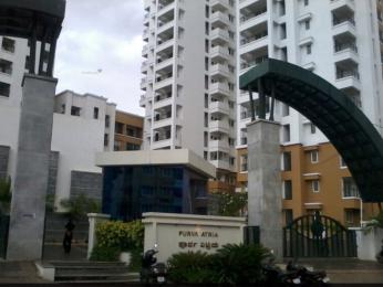 1700 sqft, 3 bhk Apartment in Purva Purva Atria Sanjay Nagar, Bangalore at Rs. 55000