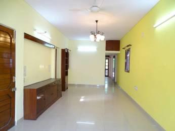 1000 sqft, 2 bhk BuilderFloor in Builder Yamuna Apartment Alaknanda, Delhi at Rs. 40000