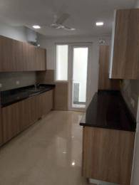 3600 sqft, 5 bhk Villa in Builder b kumar and brothers Green Park, Delhi at Rs. 9.0000 Cr