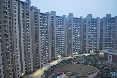 1960 sqft, 3 bhk Apartment in Mapsko Casa Bella Sector 82, Gurgaon at Rs. 90.0000 Lacs
