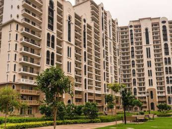 1930 sqft, 3 bhk Apartment in DLF New Town Heights 3 Sector-91 Gurgaon, Gurgaon at Rs. 93.0000 Lacs