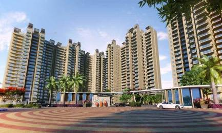 1425 sqft, 2 bhk Apartment in SS The Coralwood Sector 84, Gurgaon at Rs. 65.0000 Lacs