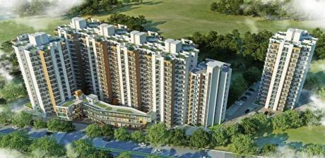 705 sqft, 2 bhk Apartment in Signature Orchard Avenue Sector 93, Gurgaon at Rs. 22.1713 Lacs