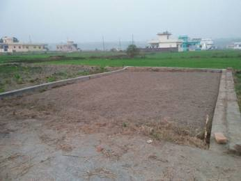 639 sqft, Plot in Builder Residential Plot Dehradun Haridwar Road, Dehradun at Rs. 7.5000 Lacs