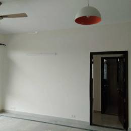 1600 sqft, 3 bhk BuilderFloor in Today Homes Todays Blossom 1 Sector 47, Gurgaon at Rs. 29000