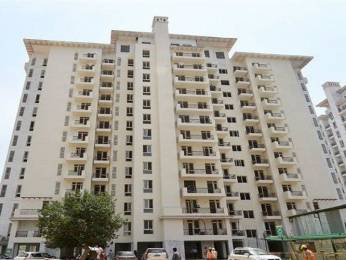 1100 sqft, 2 bhk Apartment in Unitech Gardens Sector 47, Gurgaon at Rs. 25000