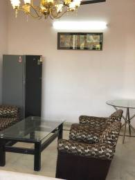 1350 sqft, 3 bhk Apartment in Builder Project Alaknanda, Delhi at Rs. 40000