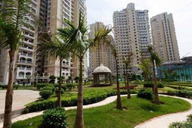 1725 sqft, 3 bhk Apartment in Purvanchal Royal City CHI 5, Greater Noida at Rs. 67.0000 Lacs