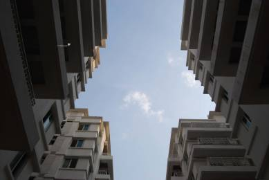 1833 sqft, 3 bhk Apartment in SVC Tree Walk Kondapur, Hyderabad at Rs. 1.1000 Cr