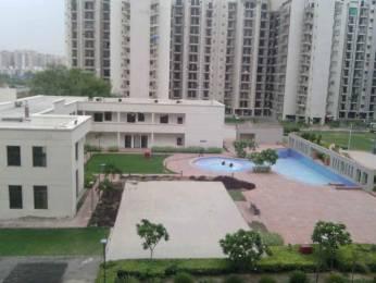 1576 sqft, 3 bhk Apartment in Umang Summer Palms Sector 86, Faridabad at Rs. 58.0000 Lacs