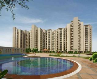 1248 sqft, 2 bhk Apartment in Umang Summer Palms Sector 86, Faridabad at Rs. 42.0000 Lacs