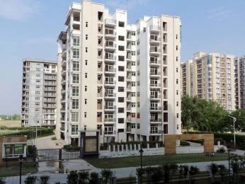 1100 sqft, 2 bhk Apartment in Omaxe New Heights Sector 78, Faridabad at Rs. 42.0000 Lacs
