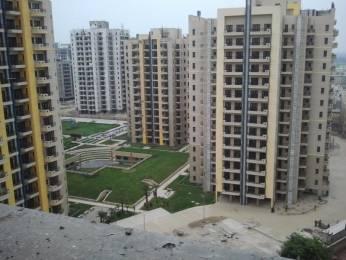 1661 sqft, 3 bhk Apartment in RPS Savana Sector 88, Faridabad at Rs. 61.0000 Lacs