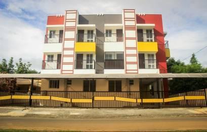 855 sqft, 2 bhk Apartment in Builder Sai Dhan Aristos Kalepully, Palakkad at Rs. 28.8000 Lacs