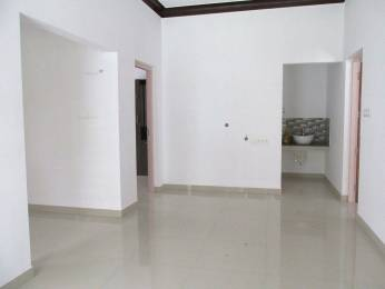 1905 sqft, 3 bhk Villa in Builder vedhantha homes Mercy College Junction, Palakkad at Rs. 47.5000 Lacs