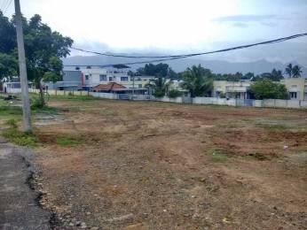 1350 sqft, Plot in Builder VT LAnd Vandithavalam Aanamri Kollengode Road, Palakkad at Rs. 5.0000 Lacs