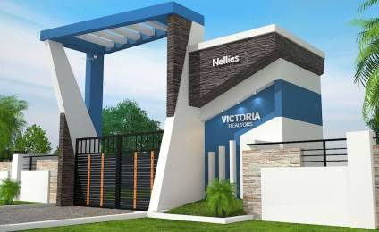 2500 sqft, 3 bhk IndependentHouse in Builder The Nellies Vandithavalam Vilayodi Chittur Road, Palakkad at Rs. 50.0000 Lacs