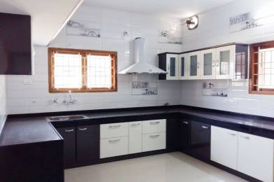 2500 sqft, 3 bhk IndependentHouse in Builder The Nellies Vandithavalam Aanamri Kollengode Road, Palakkad at Rs. 50.0000 Lacs