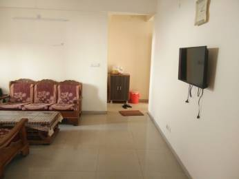 1557 sqft, 3 bhk Apartment in Omaxe Heights Sector 86, Faridabad at Rs. 18000