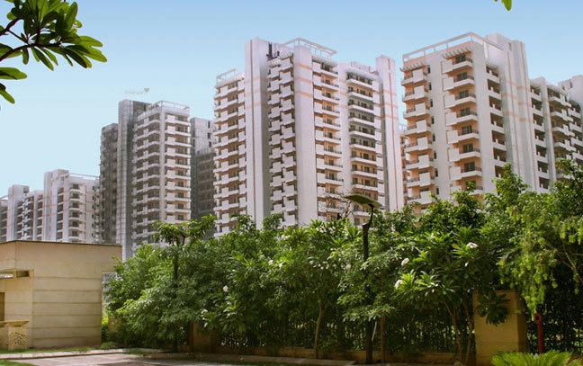 1100 sqft, 2 bhk Apartment in Puri Pratham Sector 84, Faridabad at Rs. 35.0000 Lacs