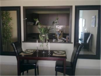 1093 sqft, 2 bhk Apartment in Amit Astonia Royale Ambegaon Budruk, Pune at Rs. 13000