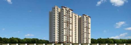 1050 sqft, 2 bhk Apartment in SG Grand Raj Nagar Extension, Ghaziabad at Rs. 28.0000 Lacs
