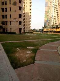 1036 sqft, 2 bhk Apartment in Unitech Uniworld Gardens 2 Sector 47, Gurgaon at Rs. 22500