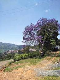 1308 sqft, Plot in Builder Project Coonoor, Ooty at Rs. 21.5000 Lacs