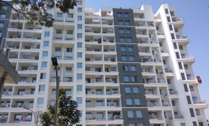 1100 sqft, 2 bhk Apartment in Tribute Vihana Mundhwa, Pune at Rs. 65.0000 Lacs
