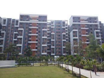 1283 sqft, 3 bhk Apartment in Venkatesh Graffiti Mundhwa, Pune at Rs. 22000