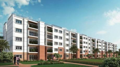 1146 sqft, 2 bhk Apartment in Prestige Kew Gardens Bellandur, Bangalore at Rs. 82.5000 Lacs