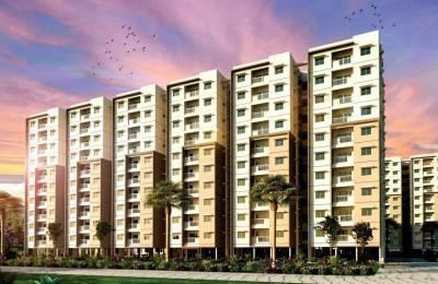 1047 sqft, 3 bhk Apartment in Builder Purva Provident Kenworth Rajendra Nagar, Hyderabad at Rs. 64.3500 Lacs